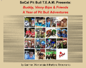 Buddy, Vinny Bips & Friends:  A Year of Pit Bull Adventures